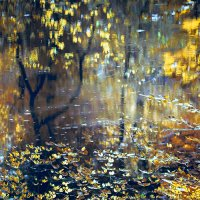 Осенняя акварель :: Sergey Leonidchenko