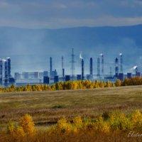 Промышленный пейзаж :: Екатерина Березина