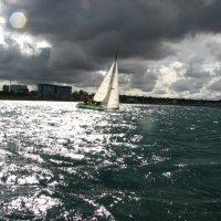 Будет шторм :: Анна Выскуб