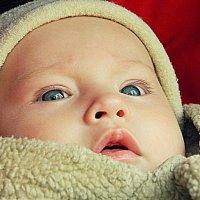 Моя маленькая модель :: Елена Лоскутова