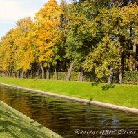 Осенняя прогулка :: Ирина Дубровина