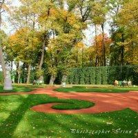 Осенняя прогулка по Летнему саду :: Ирина Дубровина