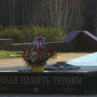 Мемориал :: Натали V