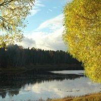 Озеро :: Натали V