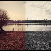 Дай дураку две жизни, и он повторит свой путь. :: Maria Murachova