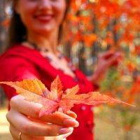 Осень в руках :: Виктория Чагина