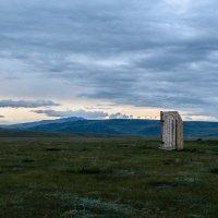 Удобства в степи :: Леонид Синев