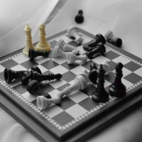 Chess :: Анастасия Филиппова