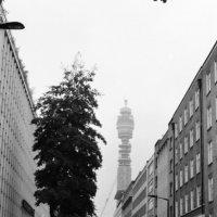 London :: Дмитрий Ланковский