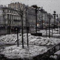 Невская весна :: Виталий Бенгард
