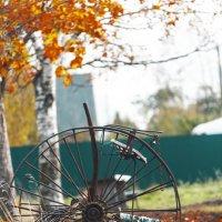 ...колесо... с историей... :: Сергей Долженко