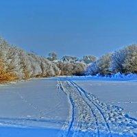 река Каргат :: Василий Щербаков
