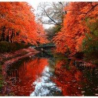 Осень :: Kate Girman