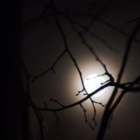 полночь :: Александр Беляков