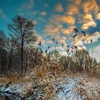 Утро на реке ** :: Виктор Грузнов