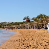 Пляж :: Наталья Елгина