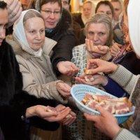 Руки тянутся к Благодати :: Илья Шипилов