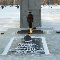 Новосибирск. Монумент славы, караул у вечного огня :: Андрей Польских