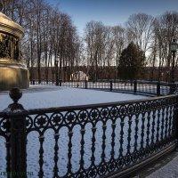 Изысканый стиль и качество :: Евгений Никифоров