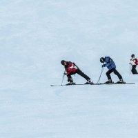 лыжники :: юля каштанова