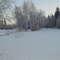 Зима :: Анна Коваленко