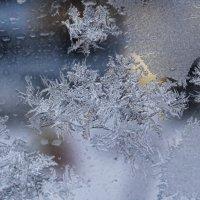 мороз рисует.... :: navalon M