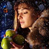 Яблоки в снегу. :: Сергей Михайлов