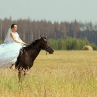 Сбежавшая невеста :: Светлана Белова