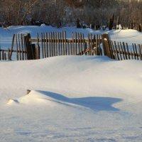 мороз и солнце!!!! :: Василий Щербаков