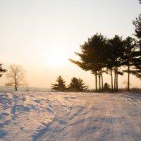Зимний вечер :: Тамара Морозова