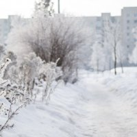 зименее утро :: Игорь Климчук