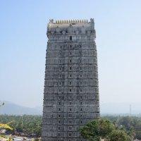 2014.01.05 - Карнатака. Мурдешвар. Голурам сверху :: Минихан Сафин