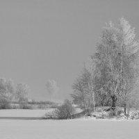 Морозная свежесть :: Максим Никитенков
