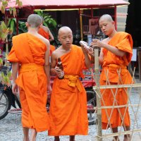 Таиланд. Сценка в монастыре :: Владимир Шибинский
