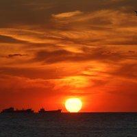 Закат на Азовском море :: Игорь Герман