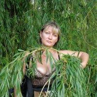 Алиса и ива :: Sergey Atmo Atmozh
