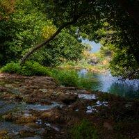Крка (национальный парк). Хорватия :: Юлия Степанова