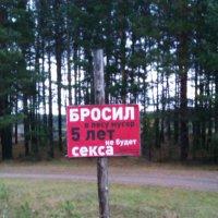 Рисковать или нет, личное дело каждого) :: Наталья Варламова