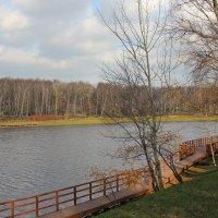 Джамгаровский пруд :: Сергей Белолипецкий