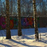 красивый забор :: Яков Реймер