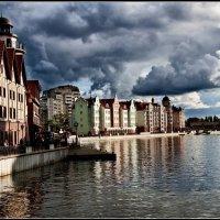 Калининград :: ник. петрович земцов