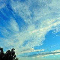 Перистые облака. :: Геннадий Александрович