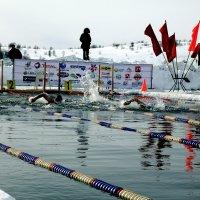 Международные соревнования :: Виктор Шведин