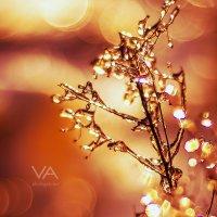 Frosty :: Валерия Азамат