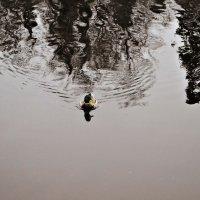 Осень :: Анна Коваленко