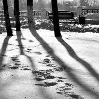 В парке... :: Asya Piskunova