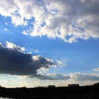 Небеса :: Соломія Палига