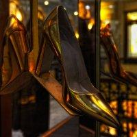 Золотая туфелька :: Aleks
