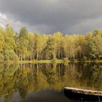 Осенний пруд :: Александр Головко