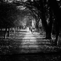 шаг за шагом не спеша - я иду вперед сама ... :: Дмитрий Призрак